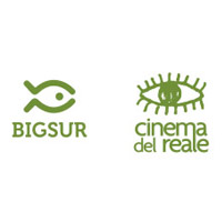 cinemarealebigsur
