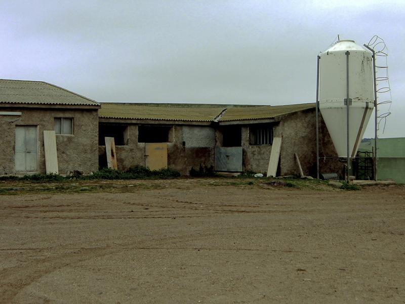 15-03-06-azienda-agricola-fratelli-Duras-crebineddu-Ruinas-OR-001