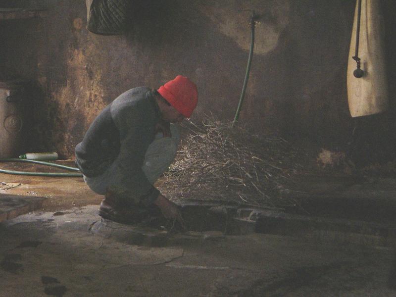15-03-06-azienda-agricola-fratelli-Duras-crebineddu-Ruinas-OR-018-2