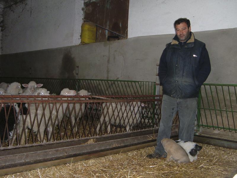 15-03-06-azienda-agricola-fratelli-Duras-crebineddu-Ruinas-OR-018